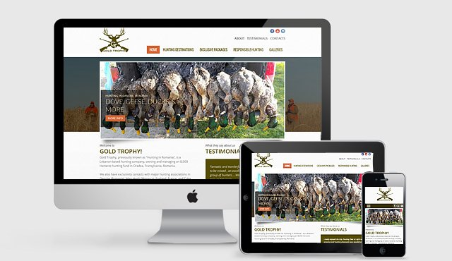 Responsive Website for Gold Trophy