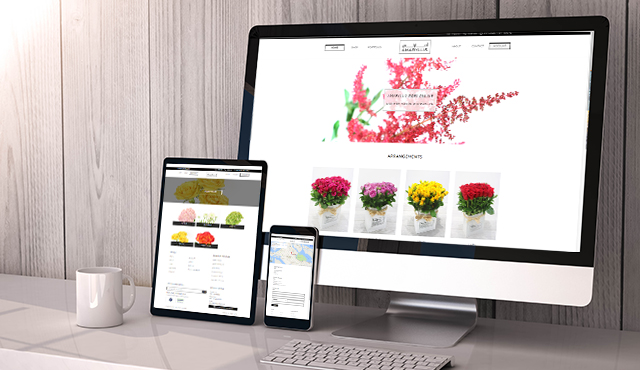 E-Commerce Website for Amaryllis Flowers